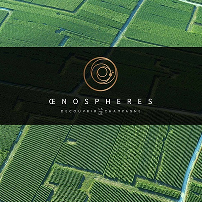 oenospheres
