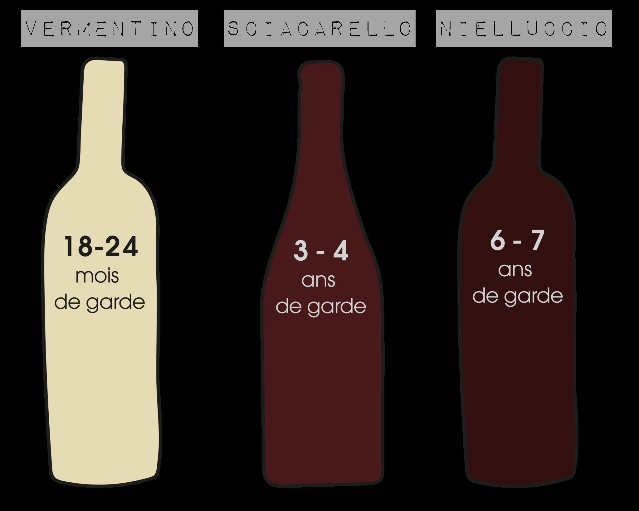 vins corse temps de garde-01