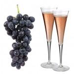 Savez-vous choisir votre champagne idéal ?