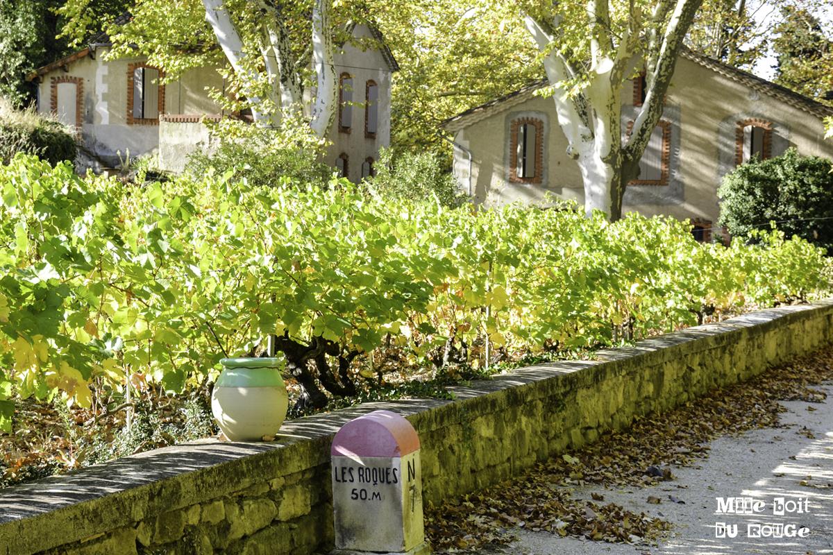 Découvertes et rencontres insolites à Vacqueyras